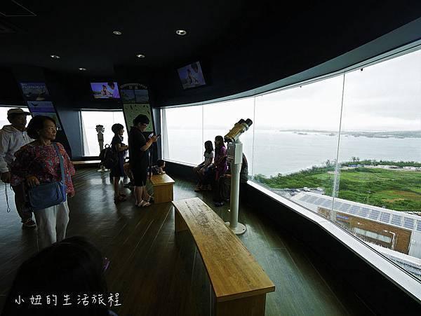 沖繩套票,美麗海,恐龍,名護動物園-22.jpg