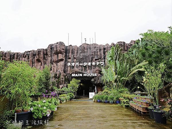 沖繩套票,美麗海,恐龍,名護動物園-24.jpg