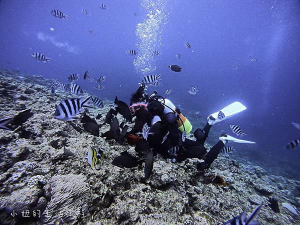 沖繩潛水浮潛,台灣人,台語,沖繩藍-22.jpg