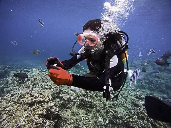 沖繩潛水浮潛,台灣人,台語,沖繩藍-24.jpg
