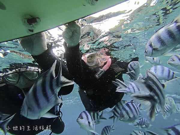沖繩潛水浮潛,台灣人,台語,沖繩藍-25.jpg