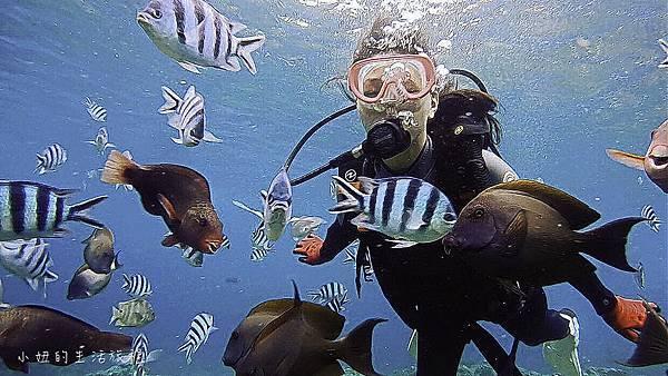 沖繩潛水浮潛,台灣人,台語,沖繩藍-26.jpg