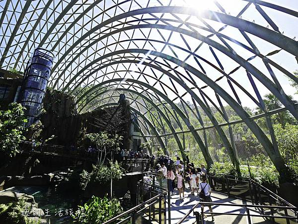 木柵動物園,穿山甲館,熱帶雨林館,2019-23.jpg