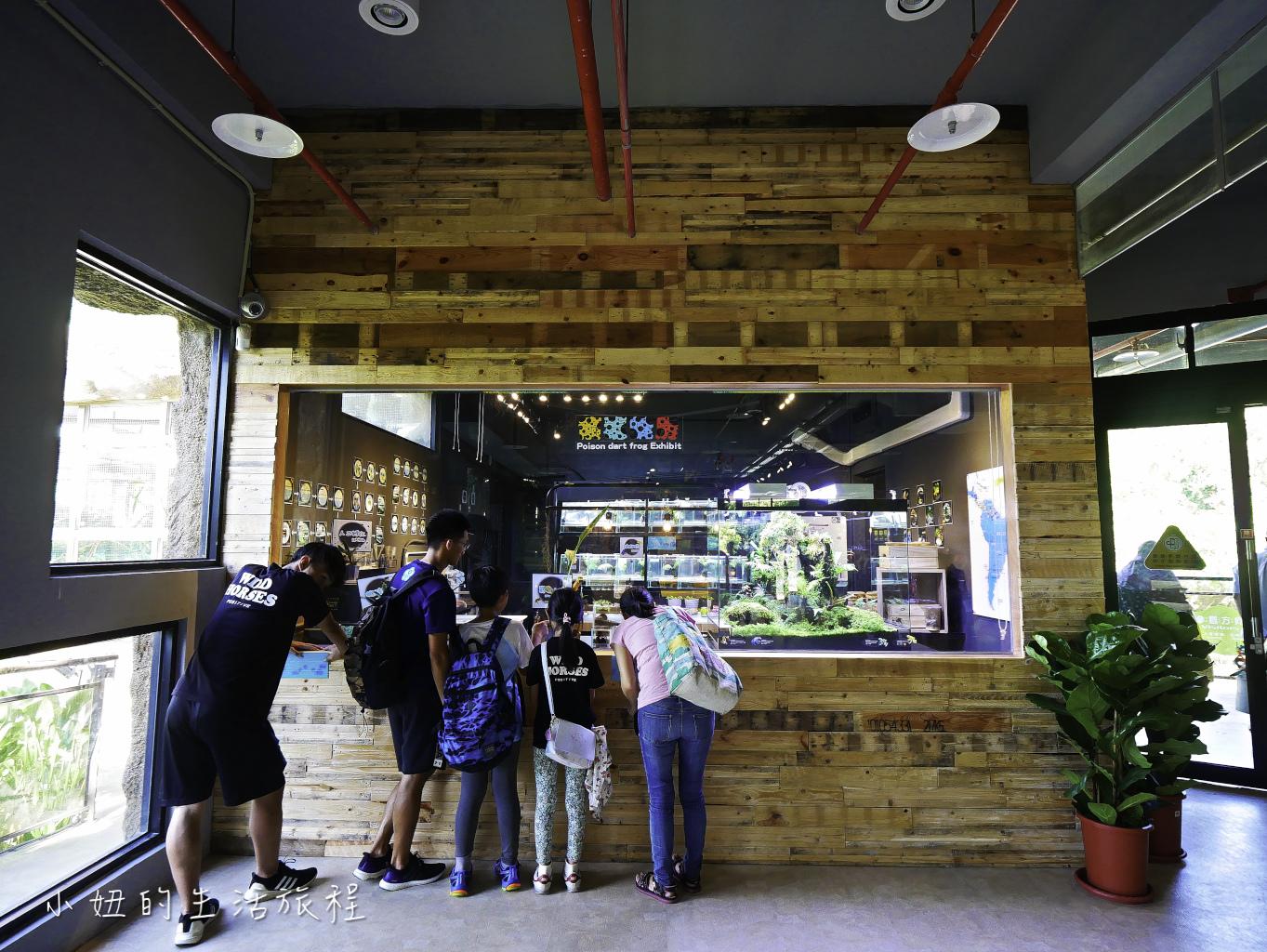 木柵動物園,穿山甲館,熱帶雨林館,2019-52.jpg