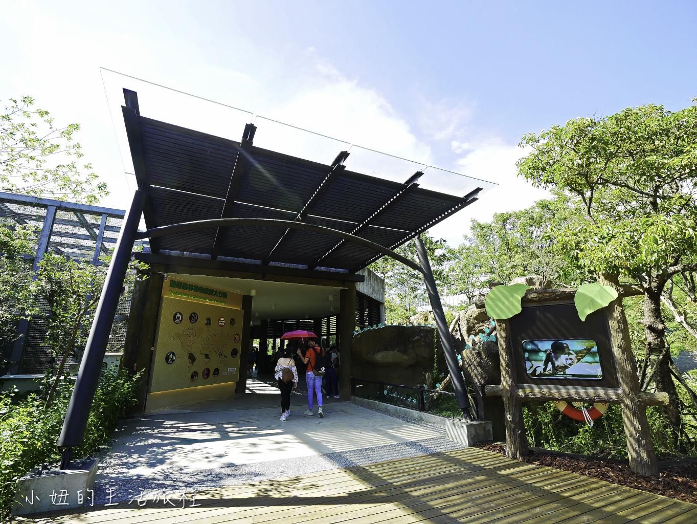木柵動物園,穿山甲館,熱帶雨林館,2019-67.jpg