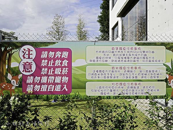 行健有機村,張美阿嬤有機農場,梅花鹿-14.jpg