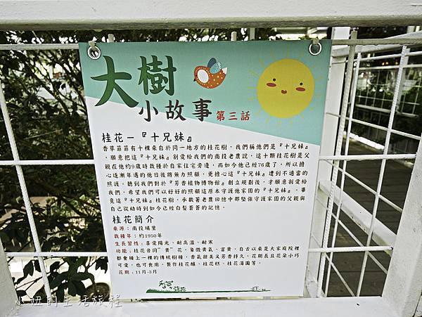 香草菲菲-16.jpg