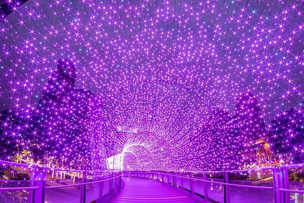 紅粉星橋.jpg