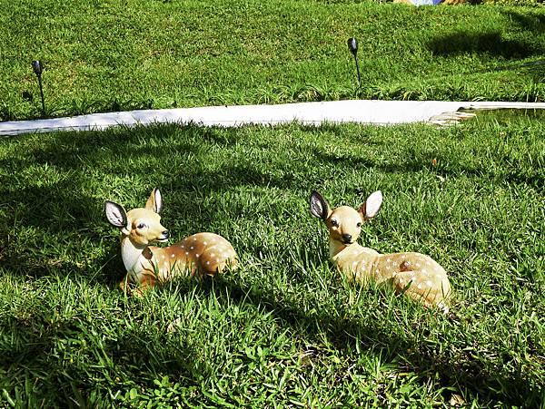 礁溪浴場,宜蘭哈比村,兔子迷宮2-16.jpg