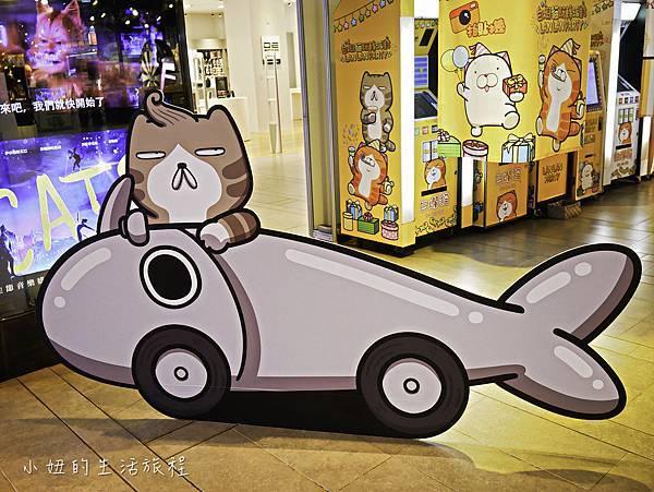 三創,白爛貓-5.jpg