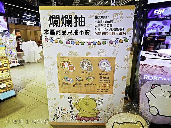 三創,白爛貓-12.jpg