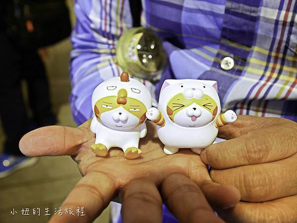 三創,白爛貓-31.jpg