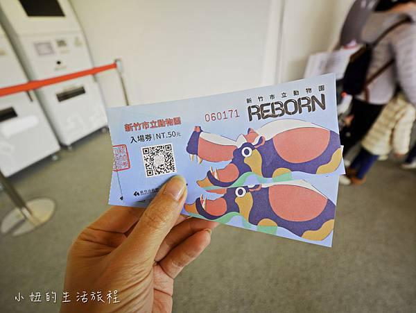 新竹動物園-4.jpg