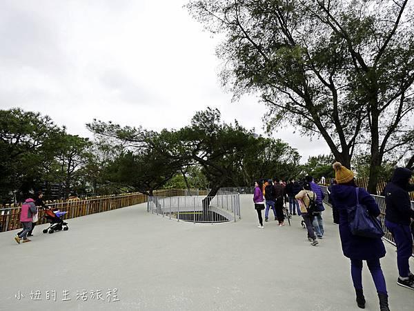 新竹動物園-7.jpg