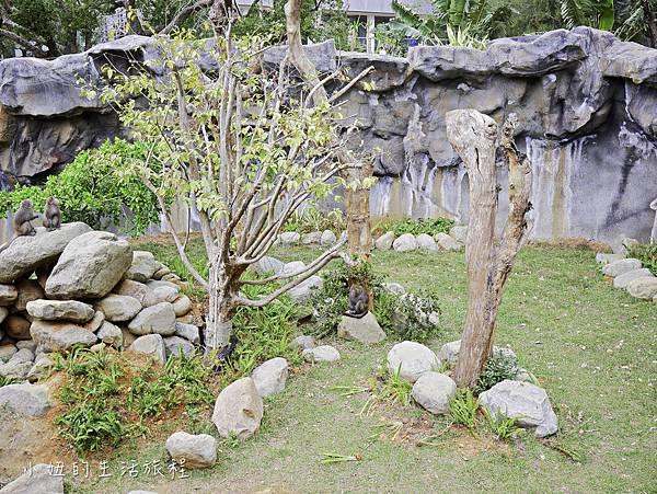 新竹動物園-25.jpg