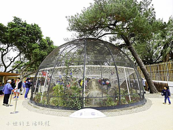 新竹動物園-35.jpg