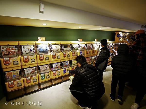 新竹動物園-43.jpg