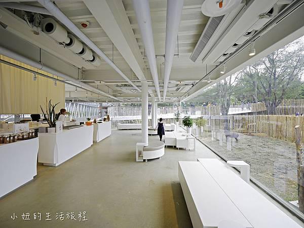 新竹動物園-58.jpg