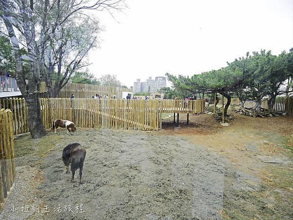 新竹動物園-66.jpg