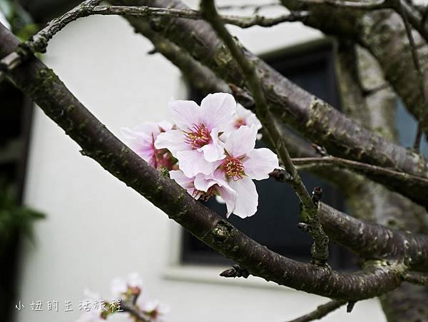 青禾別苑-6.jpg