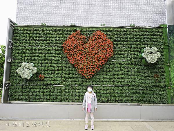 松山機場景觀台,看飛機-13.jpg
