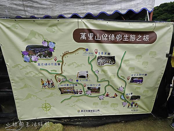 高家繡球花第三園區-3.jpg