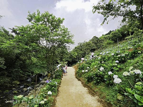 高家繡球花第三園區-12.jpg