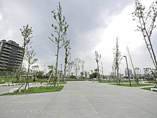 南港新新公園-5.jpg