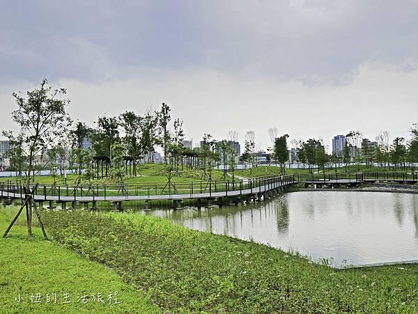 南港新新公園-4.jpg