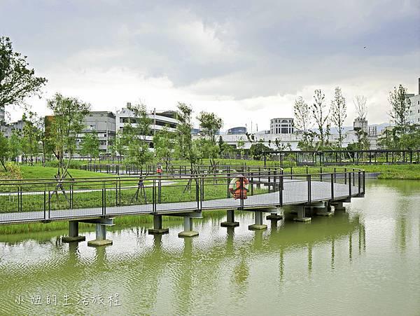 南港新新公園-9.jpg