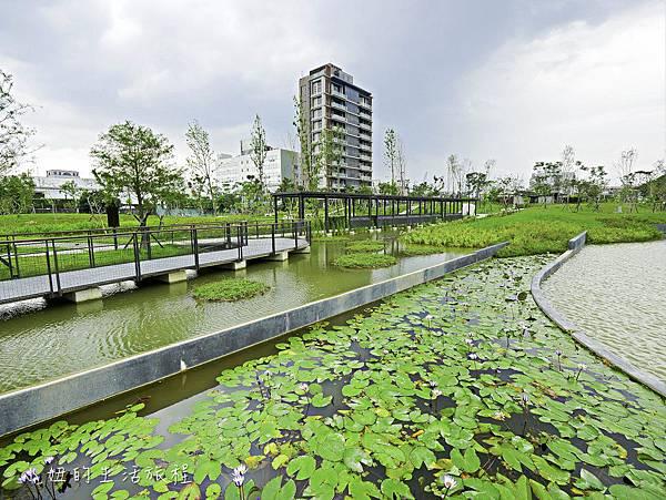 南港新新公園-12.jpg