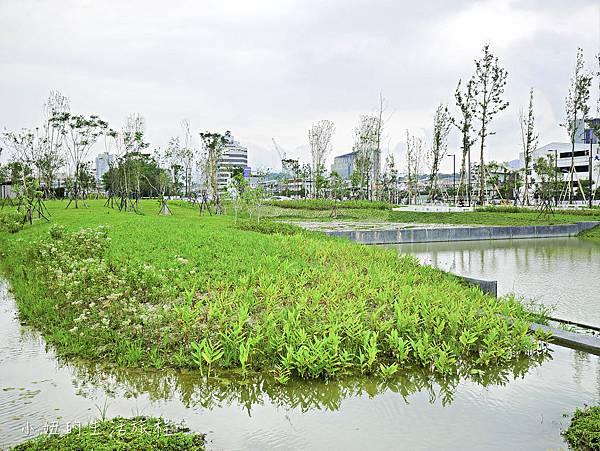 南港新新公園-14.jpg