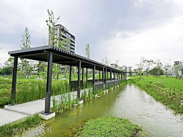 南港新新公園-15.jpg