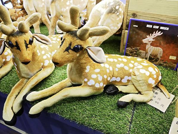 鹿境,墾丁餵鹿,梅花鹿-38.jpg