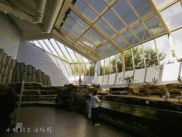 澎湖水族館-15.jpg