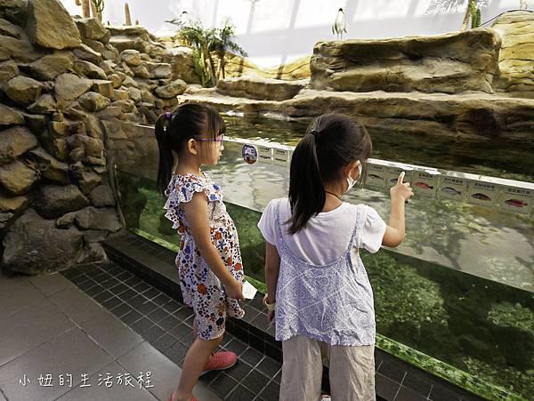 澎湖水族館-16.jpg
