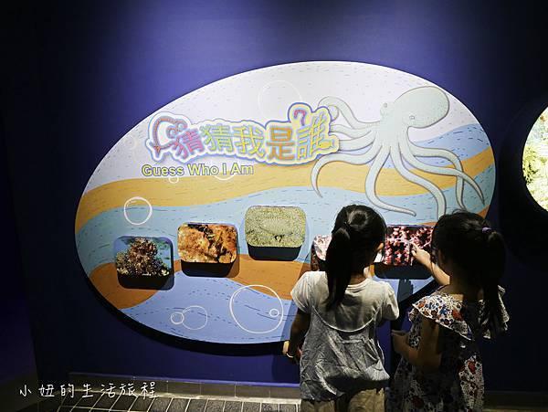 澎湖水族館-27.jpg