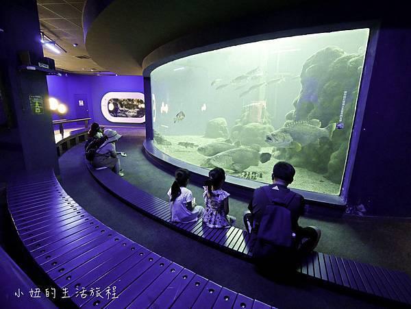 澎湖水族館-40.jpg