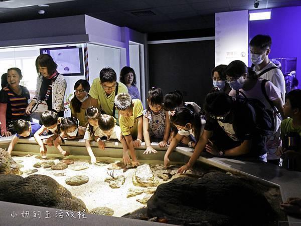 澎湖水族館-51.jpg