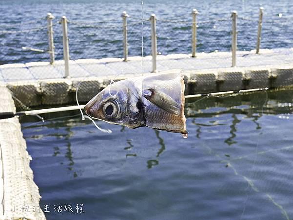 澎湖海洋牧場,鮮蚵吃到飽-31.jpg