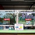 台南四草綠色隧道-03.jpg