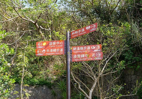五股觀音山林梢步道-03.jpg