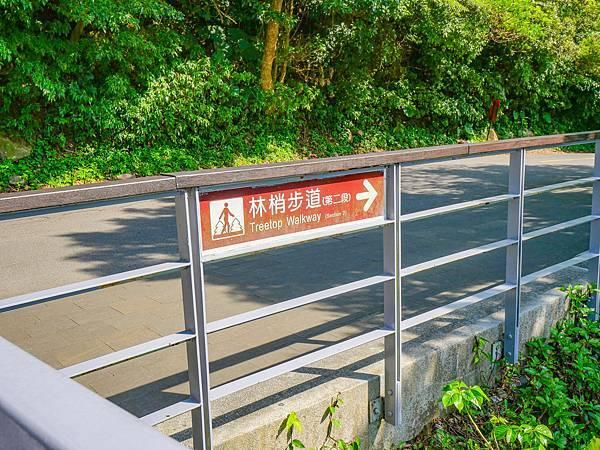 五股觀音山林梢步道-16.jpg