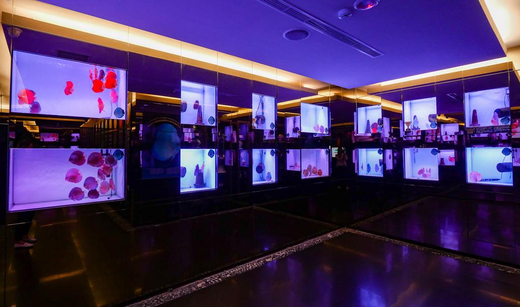 神仙魚餐廳-10.jpg