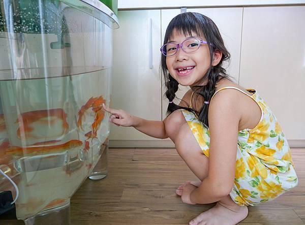 魚菜共生-24.jpg