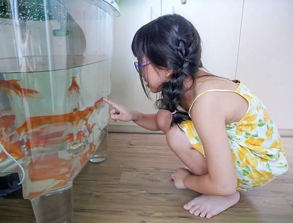 魚菜共生-25.jpg