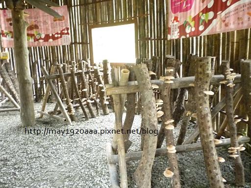 07_樂活農場-08