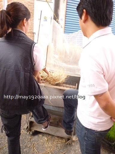 2012冬山茶米節_1-11
