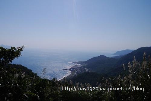 2013東北角草嶺古道芒花季_P1030029.JPG