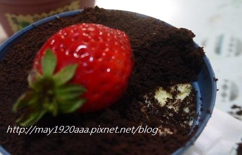 義珍香-盆栽蛋糕_P1030639.JPG